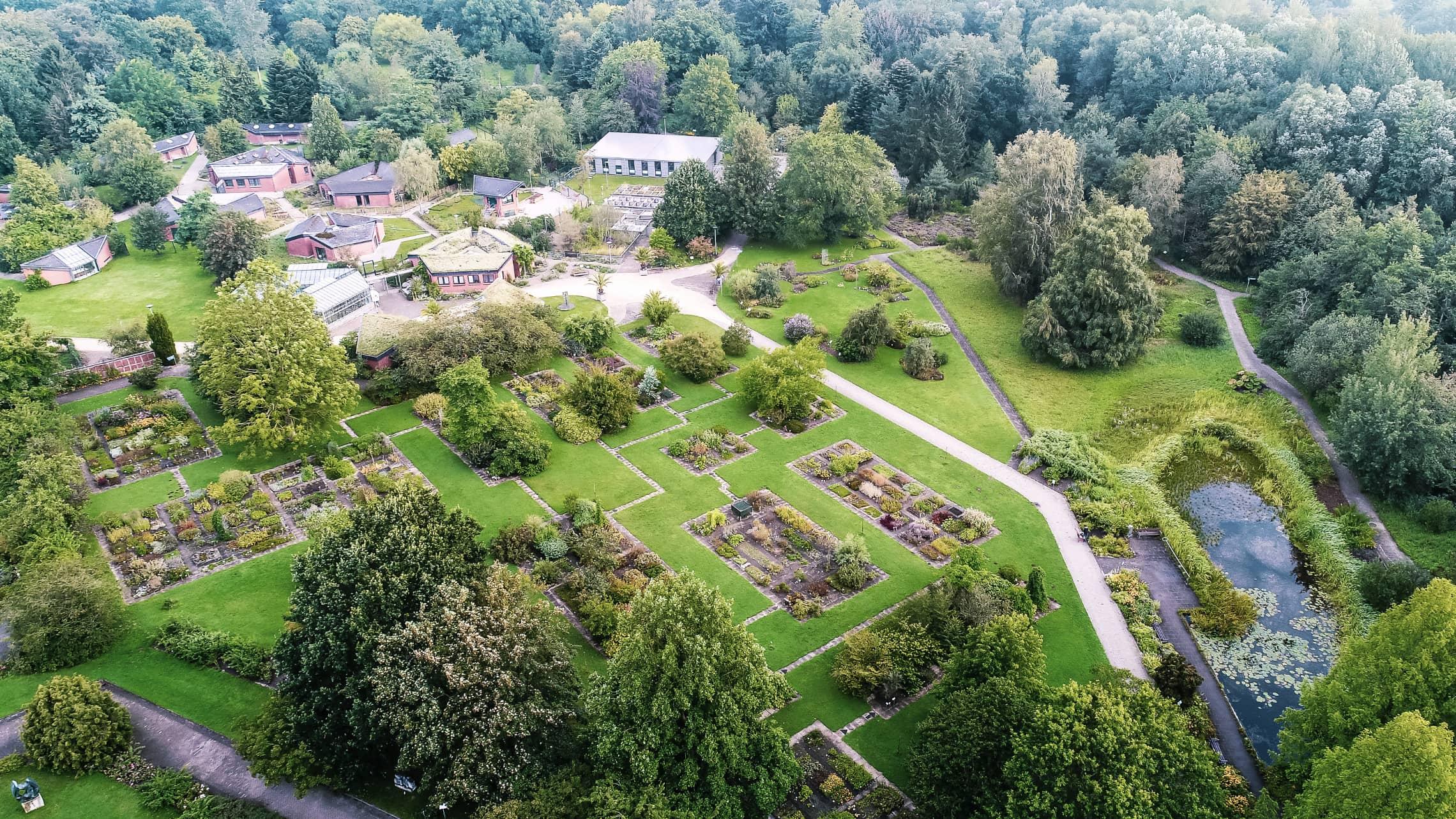 Im Botanischen Garten an der Uni Kiel sind 14.000 Pflanzenarten zuhause
