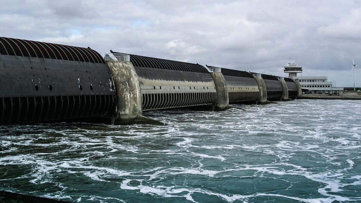 Am Eidersperrwerk brütet eine Kolonie der Küsten- und Flussseeschwalben am Deutschlands.
