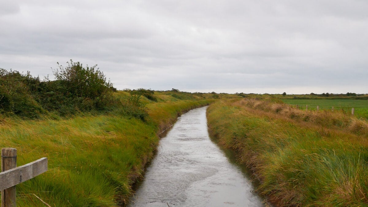 Mit Klootstöcken hüpfen die Nordfriesen elegant durchs Marschland