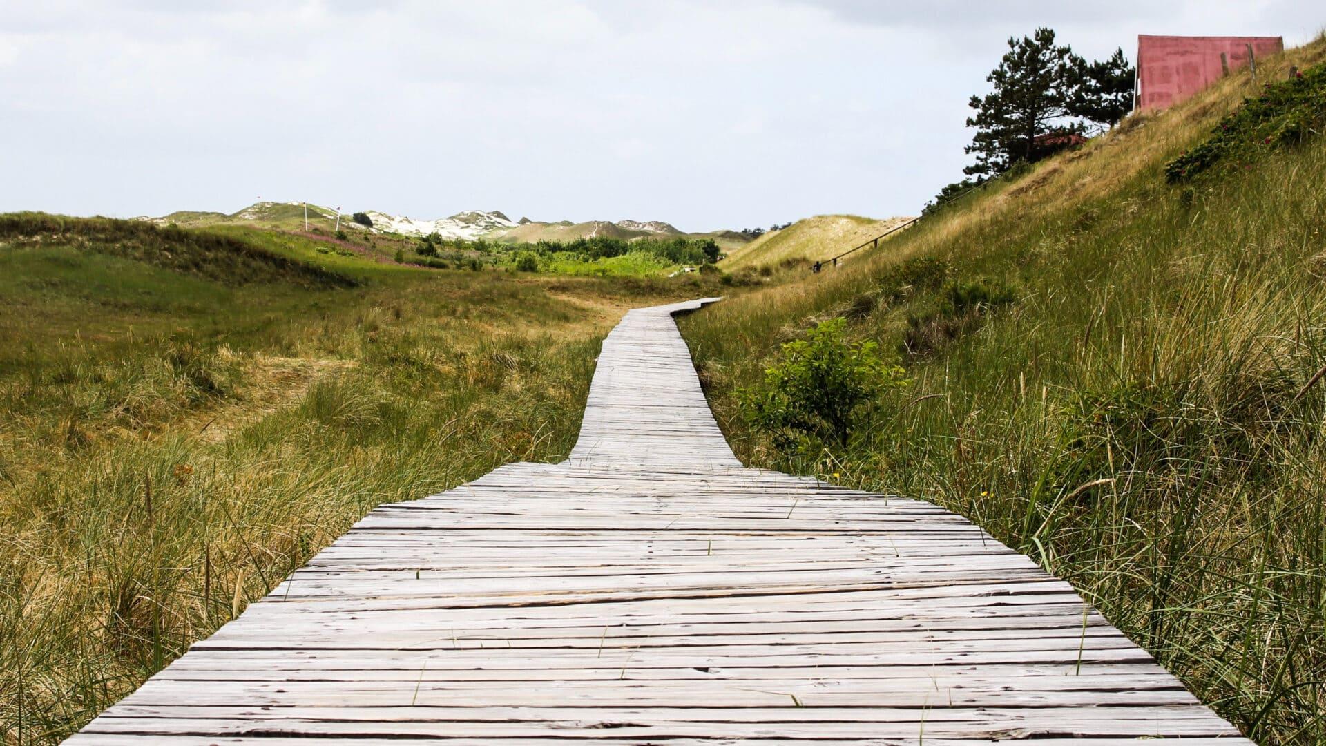 Wie schön, dass du mitabstand.sh entdeckt hast! Auf dieser Seite findest du viele tolle Ideen für deinen Urlaub in Schleswig-Holstein.